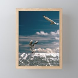 Travel Photography, England, Seagulls on wall, Farne Islands Framed Mini Art Print