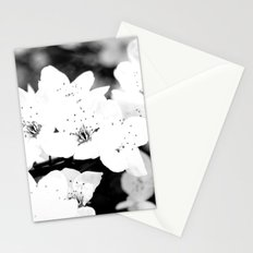 resurection Stationery Cards