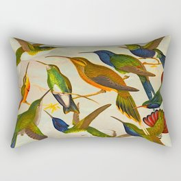 Translate Album de aves amazonicas - Emil August Göldi - 1900 Colorful Hummingbirds Rectangular Pillow