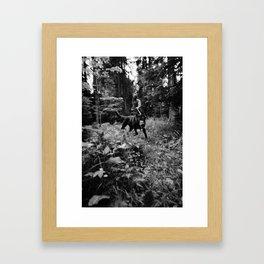 Test-Foto 24 // Joni und Wolfi Framed Art Print