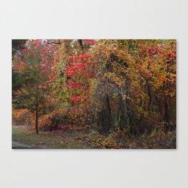 Evocative Autumn Canvas Print