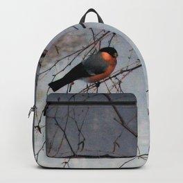 bullfinch, gil Backpack
