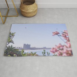 california oceanscape - flowers and seagulls Rug