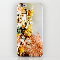 summer solstice 6 iPhone & iPod Skin