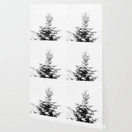 Fir Tree Wallpaper