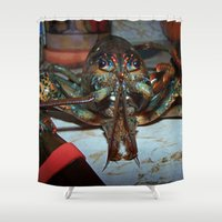 lobster Shower Curtains featuring Lobster by DanByTheSea