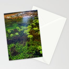 Giant Springs - Great Falls, Montana Stationery Cards