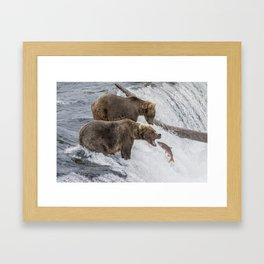 The Catch - Brown Bear vs. Salmon Framed Art Print