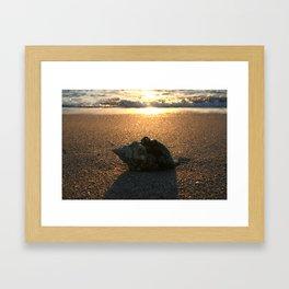 Big Shell  Framed Art Print