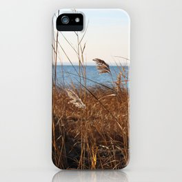 MD'Youville iPhone Case