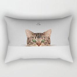 Cat on Gray Rectangular Pillow