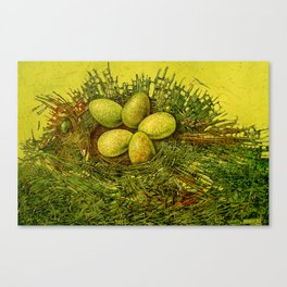 Fish-nest Canvas Print