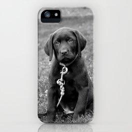 B&W Puppy iPhone Case
