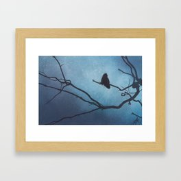 Canyon Denizen II (Great Horned Owl with Eucalyptus Branch) Framed Art Print
