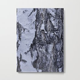 birch-tree Metal Print