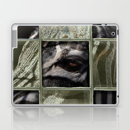 zee-brah' Laptop & iPad Skin