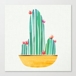 Tiny Cactus Blossoms Canvas Print