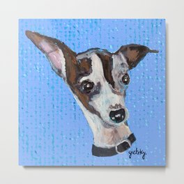 Mia the Italian Greyhound Metal Print