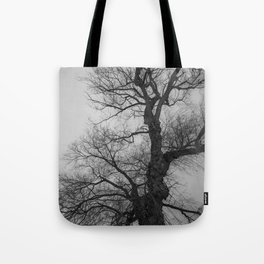 Nature Photography Weeping Willow   Lungs of the Earth   Black and White Tote Bag