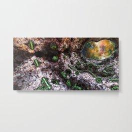 Dimension100-B51-E13-54-27-F1-RMpt01Full-Edit2 Metal Print