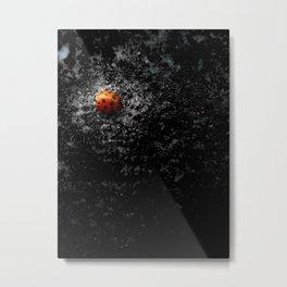 Lovely Ladybug Metal Print