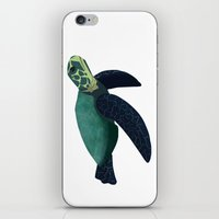 sea turtle iPhone & iPod Skins featuring Turtle by Imaginative Ink