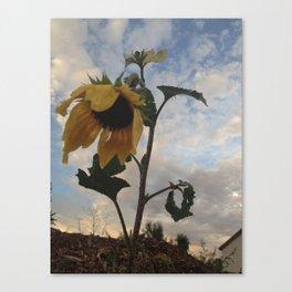 #27 Canvas Print