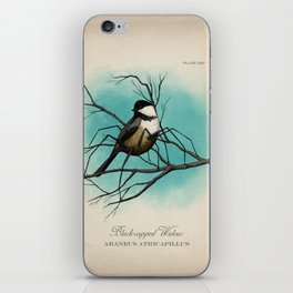Black-capped Widow iPhone Skin