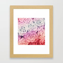 Some people grumble II  Floral rose flowers pink and multicolor Framed Art Print