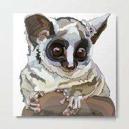 Cute Bushbaby - Baby Animal with Big Eyes White Background Metal Print