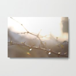 Free from bondage~Bound for Glory Metal Print