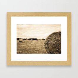 Bail's n Bail's Framed Art Print