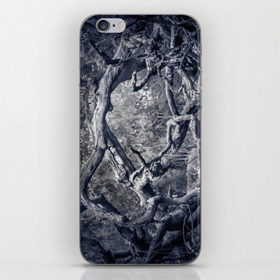 Twisted Window iPhone & iPod Skin