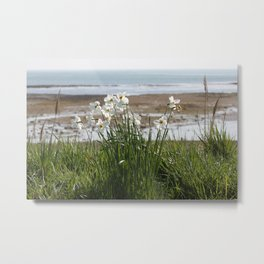 Flowers At The Seashore Metal Print