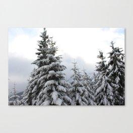Winter Zauber 1 Canvas Print
