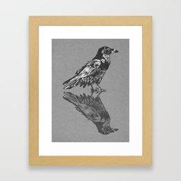 Raven Grey Framed Art Print