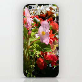 Bouquet of Begonias.... iPhone Skin