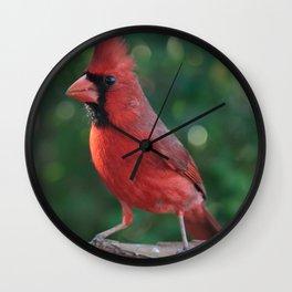 Young Male Cardinal Wall Clock