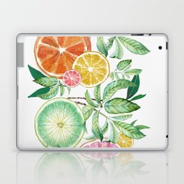 Citrus Fruit Laptop & iPad Skin