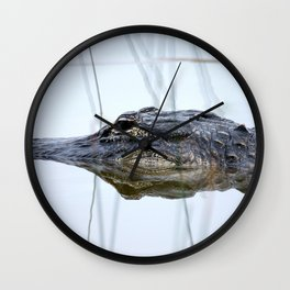 Alligator in the Everglades Wall Clock