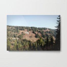 Alpine View 01 | Mount Rainier National Park Metal Print