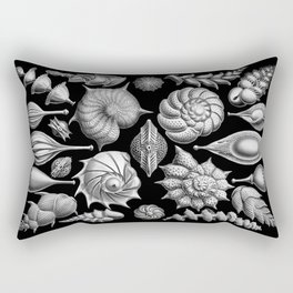 Sea Shells (Thalamophora) by Ernst Haeckel Rectangular Pillow
