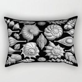 Sea Shells (Thalamophora) by Ernst Haeckel Rectangular Pillow