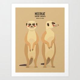 Meerkat, African Wildlife Art Print
