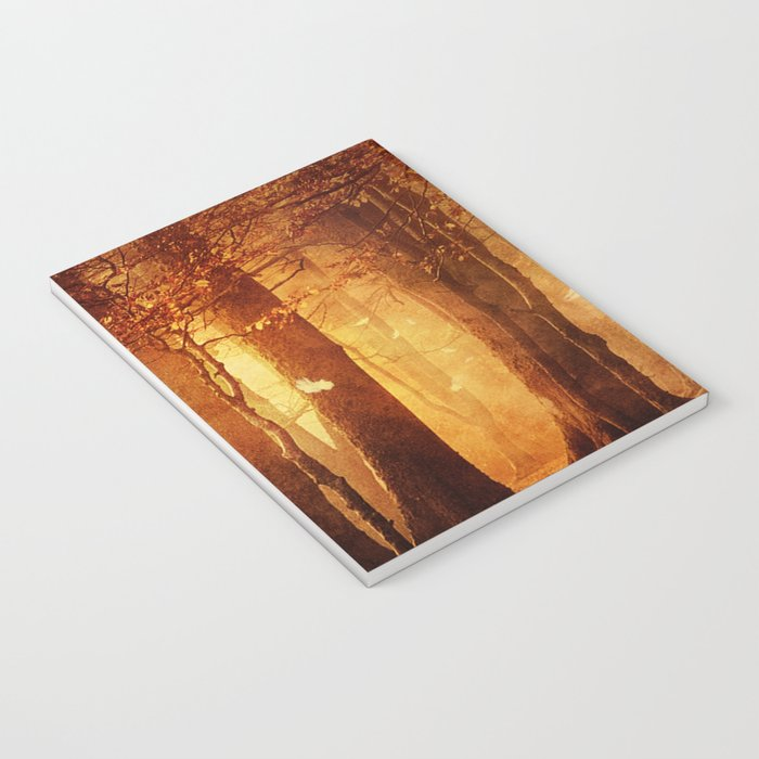 In the woods. Notebook