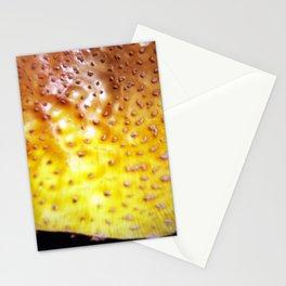 Flyageric Stationery Cards