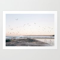 Fly on seagull wings. Art Print