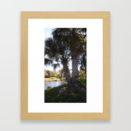 Palm Breezes Framed Art Print