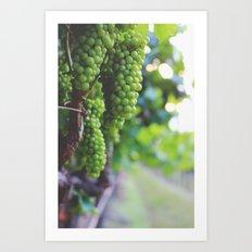 Drink More Wine in Napa Art Print