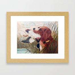 Bird Dog Framed Art Print